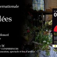 Expo Orchidées juin 2016 – Abbaye du Moncel