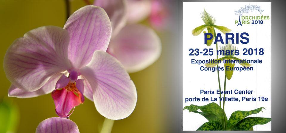 Orchidées Paris – mars 2018