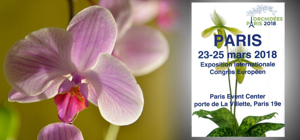 expo orchidées - paris - mars 2018