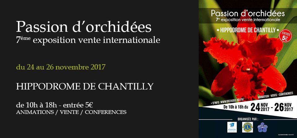 Exposition Orchidées Chantilly 2017
