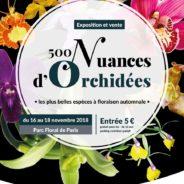 Exposition Orchidées 75 Parc Floral