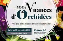 Exposition Orchidées 75 Parc Floral de Paris