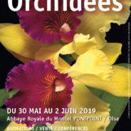 Exposition à l'Abbaye Royale de Moncel 2019